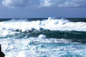 Welle in der Brandung